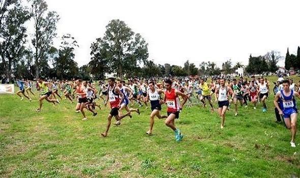 عمان اليوم - عمان للسباقات ينهي السباق الثاني للطريق إلى لومان بالمركز الخامس