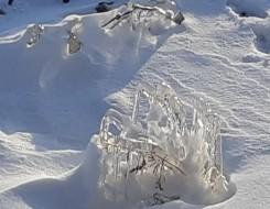 عمان اليوم - السويد تُغطي جبلاً جليدياً بغطاء من القماش خشية الذوبان صيفاً
