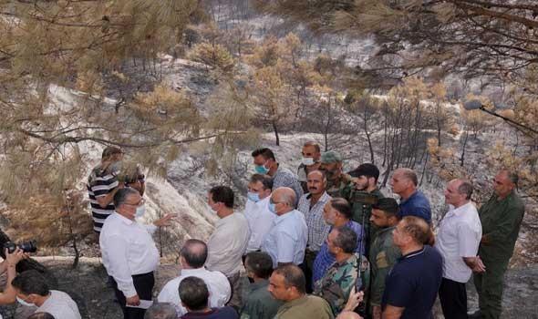 """عمان اليوم - حرائق الجزائر """"أكلت الاخضر واليابس"""" وعمليات الاخماد متواصلة ويوم حداد عام على الضحايا"""