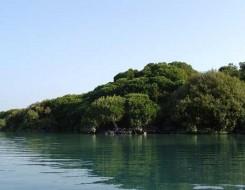 عمان اليوم - جزيرة مارتينيك الفرنسية تفرض إغلاقاً ثانياً وتدعو السيّاح للمغادرة