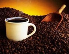 """عمان اليوم - أول قهوة """"مستنسخة"""" بنفس الطعم الحقيقي وستوفر الملايين"""